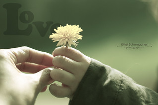 For you - | by sweetkendi-kendi