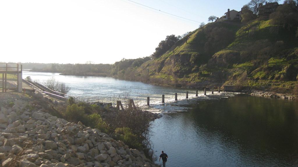 Img 3393 american river at the nimbus fish hatchery for Fish hatchery jobs