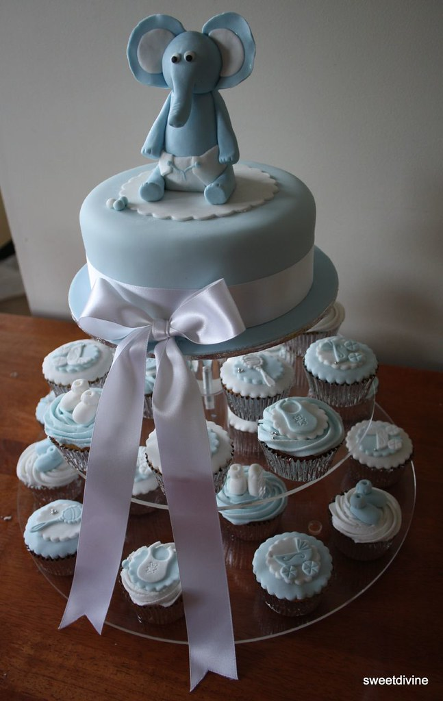 elephant cake with 24 baby themed cupcakes baby shower cak Flickr
