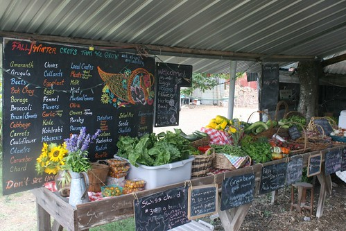 June farm stand | by Green Gate Farms