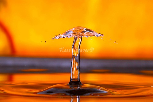 The very rare water mushroom – Orange period. | by kees straver (will be back online soon friends)