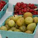 Gooseberries and Currants
