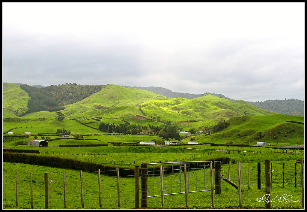 New Zealand Countryside Lord Of The Rings