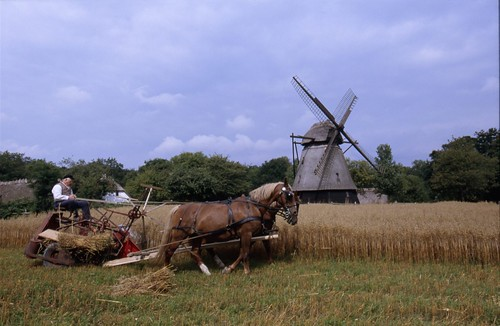 Harvest by machine | ImageID: 62233 | Odense Bys Museer | Flickr
