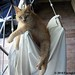Molly Doodlebug Hanging out on the Drying Rack