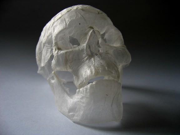 Tissue paper sculpture skull transluscent