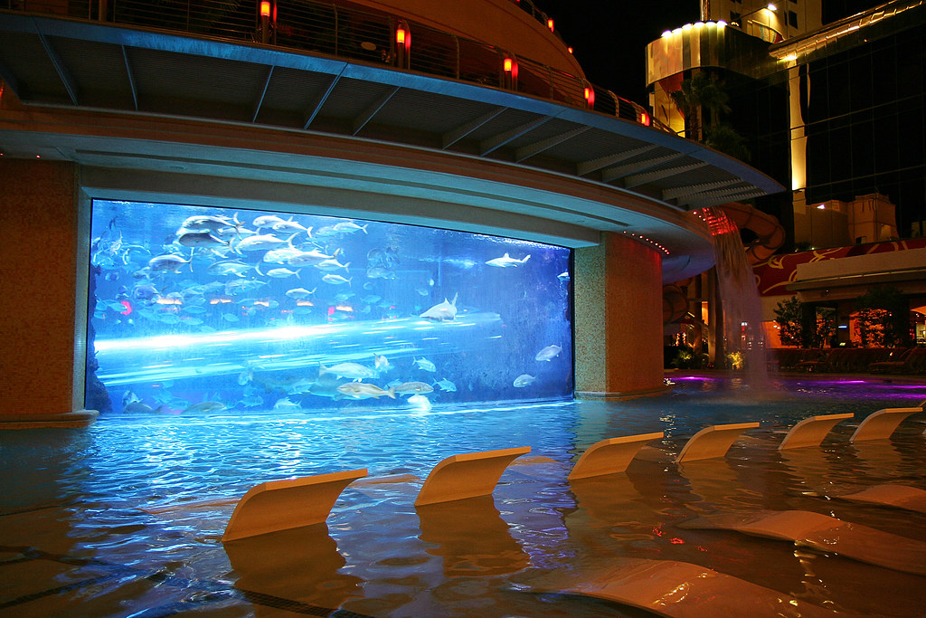 Golden Nugget Pool, Las Vegas, Nevada