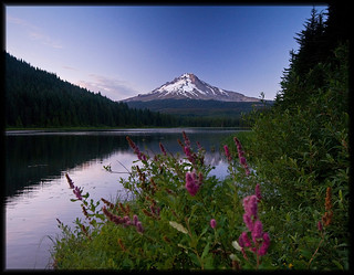 TRILLIUM LAKE, OREGON | by Cliff Zener