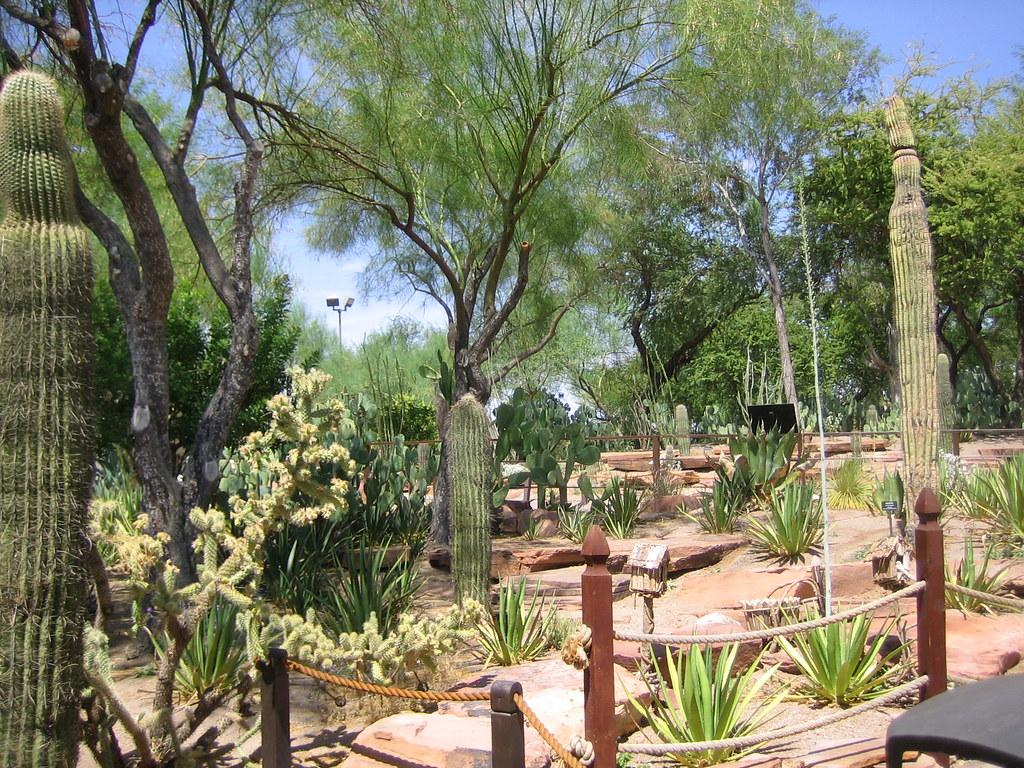 237 073110 Vegas Vacation Ethel M Ethel M Cactus Botanical Flickr
