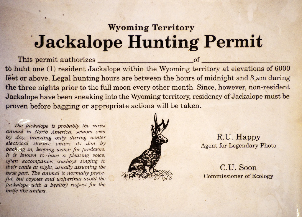 Jackalope hunting permit if you use this photo please for Wyoming fishing license