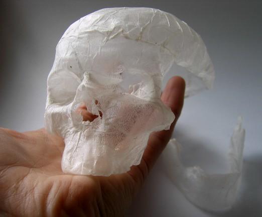 Tissue paper sculpture shrunken skull polly verity