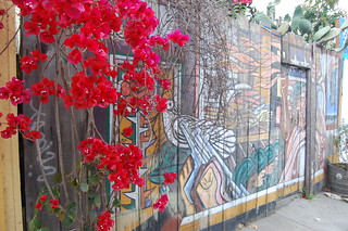 Balmy Alley Murals | by FarOutFlora
