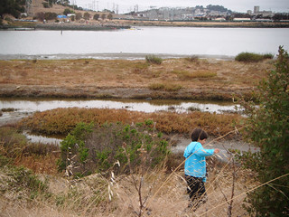India Basin Open Space | by Liz Henry