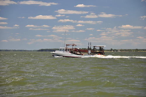 Oyster boat choptank river an oyster fishing vessel for Choptank river fishing report