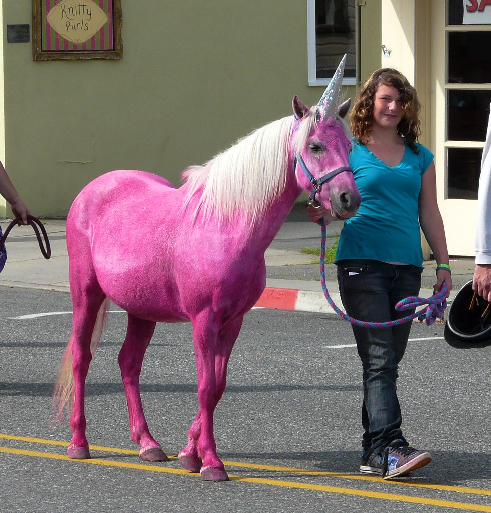 Whidbey Island Horse Beach
