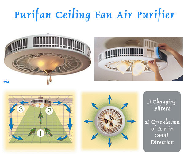 Middle Top Purifan Ceiling Fan Air Purifier Shekhar Sahu G