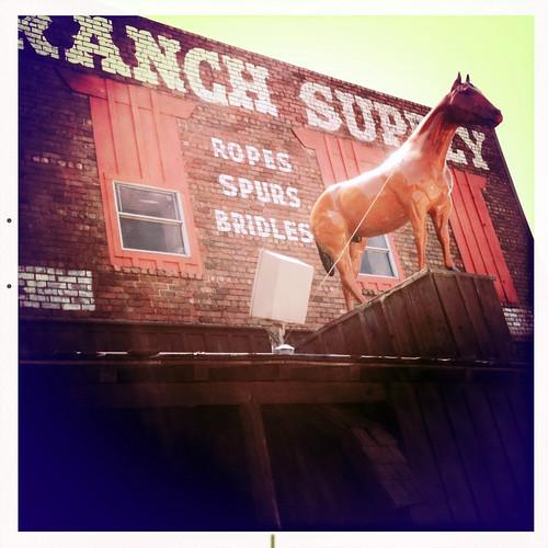 Ryon S Ranch Supply Ropes Spurs Bridles Stockyards Histori