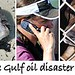 Kinship Circle - 2010-08-20 - Gulf Disaster Update 02