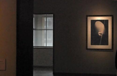 Interieur gemeentemuseum interieur gemeentemuseum flickr for 3d interieur ontwerpen gratis