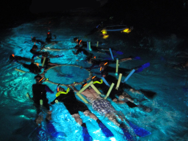 Kona Diving Company >> Swim with Manta Rays Big Island Hawaii | マンタナイトシュノーケルへ行こう ...