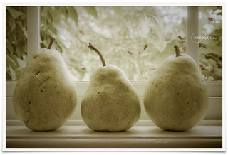 more pears ;) 194/365 | by jan@twoscoopz