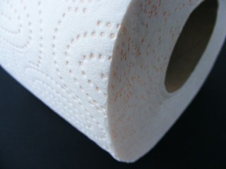 Toilet-Paper_71605-480x360 | by Public Domain Photos
