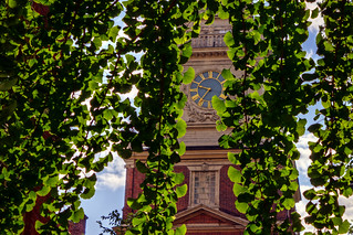 Independence-Hall-through-Ginko.jpg | by J.D. Thomas