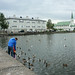 Tjörnin, Reykjavik