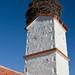 Stork's Nest in Castilla-Leon