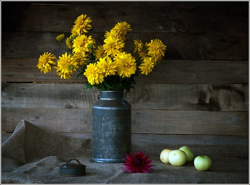 August Still Life | by senato®