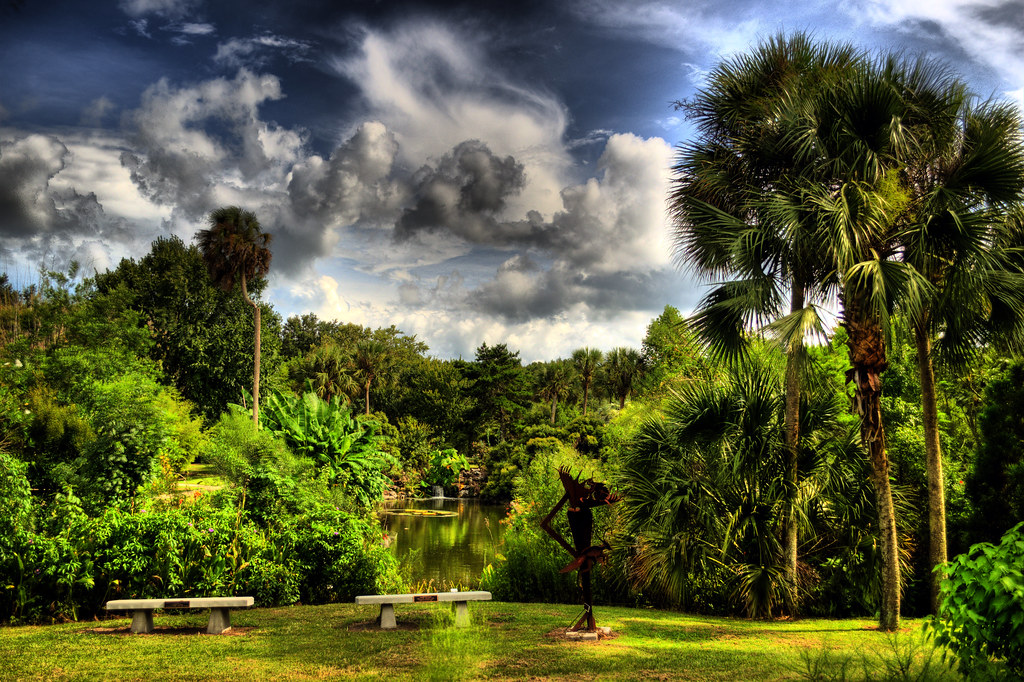 Dreamy Landscape At Kanapaha Botanical Gardens Florida Flickr