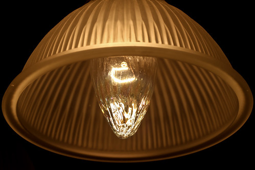 I love lamp | by The Brian Kennedy