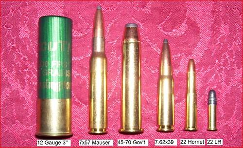 10 gauge chuck autos post for 12 ga recoil table