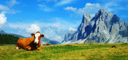 The Queen of the Dolomites | by Mattnet