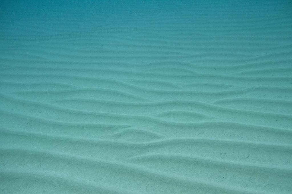 Ocean Floor Texture Ocean Floor