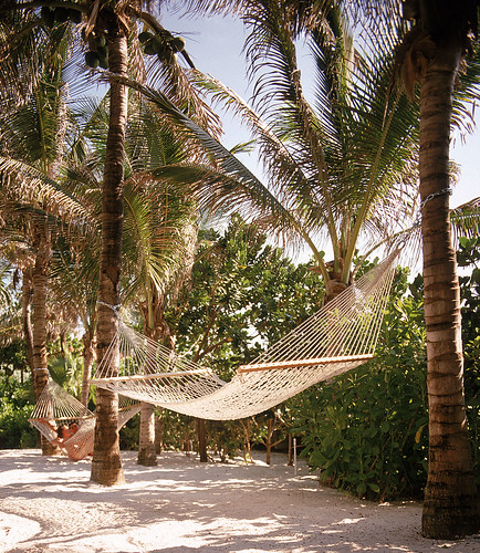 Beachside Hammocks in The Palms Gardens | by thepalmshotel