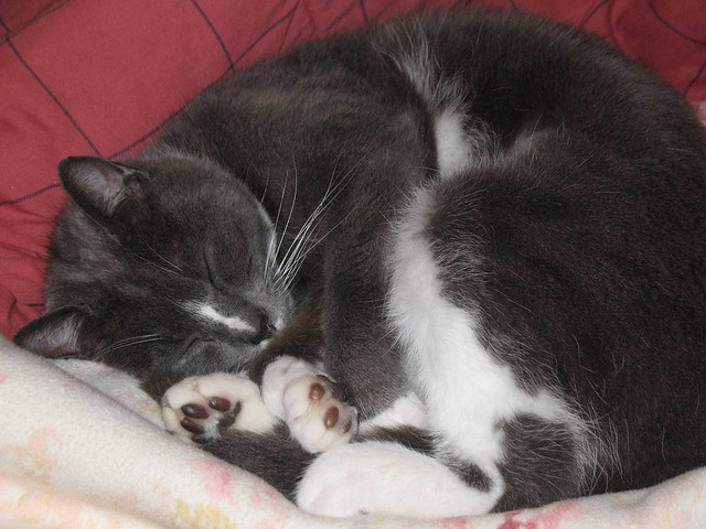 I love watching her sleep.