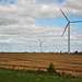 Indiana @ ≈ 80mph: they go on forever: wind farm
