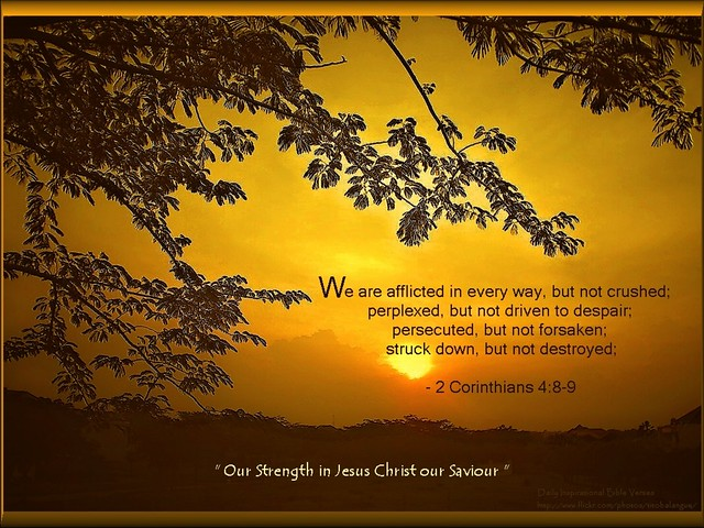 42 daily inspirational bible verse flickr photo sharing