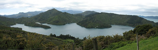 Queen Charlotte Sound pan | by j0055