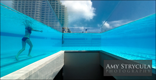 Glass Wall Swimming Pool W Hotel Miami The Glass