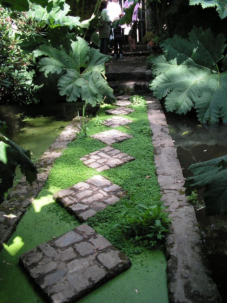 Jardin de kerdalo visite au jardin de kerdalo 2010 08 21 for Jardin kerdalo