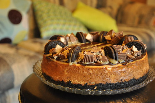 Chocolate peanut butter cheesecake | by mielpastry