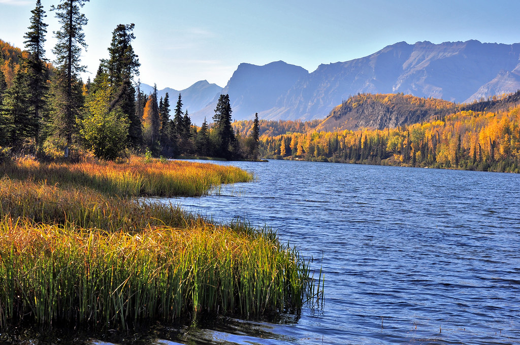 Bonnie Lake - Chickaloon, Alaska   Beautiful Autumn colors ...