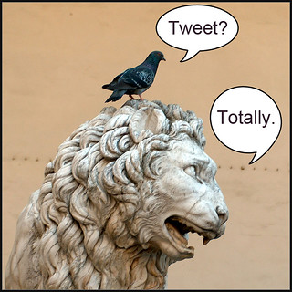 Totally Tweet. | by FindYourSearch