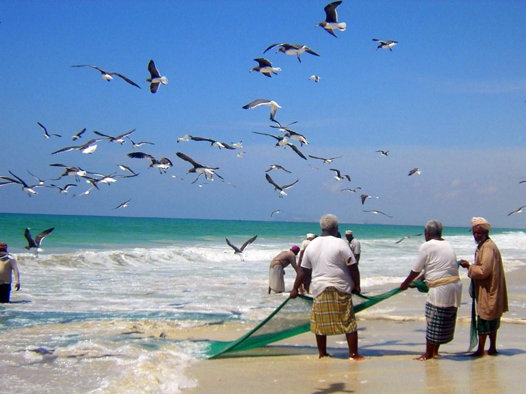R Fisheries Fishermen, Salalah, Om...