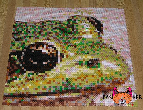Ppk Mosaic Frog This Was A Photo Taken By A Client
