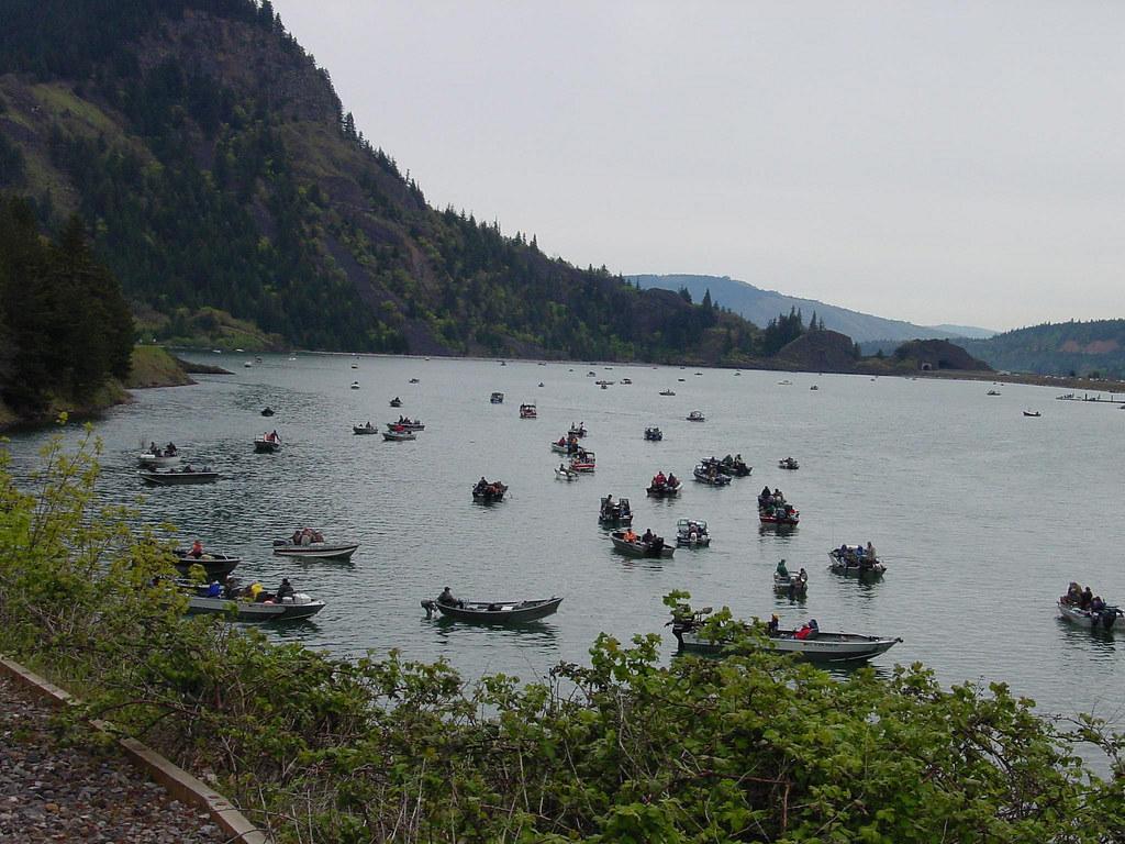 Drano Lake Fishing Drano Lake Salmon Fishing