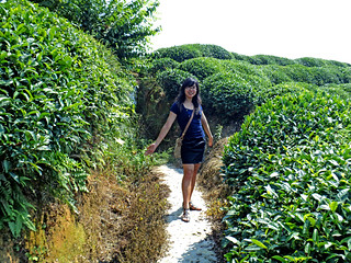 Tea passages, nooks and crannies (like this one Secret Garden) | by Jen Jen Liu