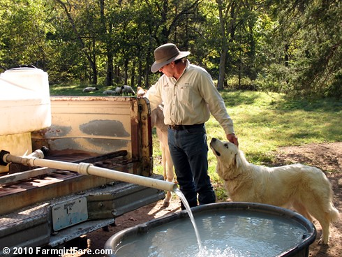 Filling stock tanks 1 | by Farmgirl Susan